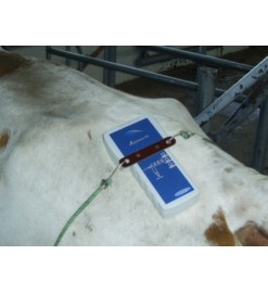 Аппарат для ветеринарии